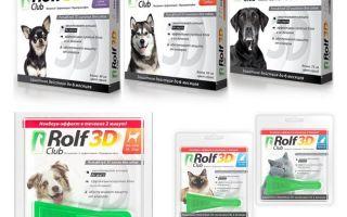 Tropfen Rolf Club 3D von Flöhen für Hunde und Katzen