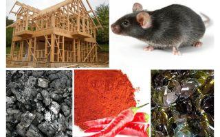 Schutz des Rahmenhauses gegen Mäuse