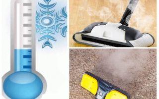 Wie man Teppichflöhe Insektizide und improvisierte Mittel loswerden