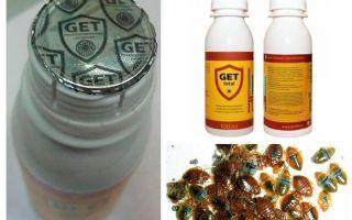 Get Bedbug Remedy
