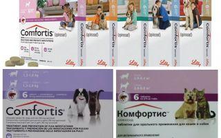 Flohtabletten für Hunde und Katzen