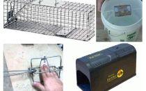 DIY Rattenfalle