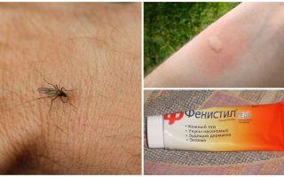 Wie und wie man den Juckreiz von Mückenstichen bei einem Kind und einem Erwachsenen entfernt