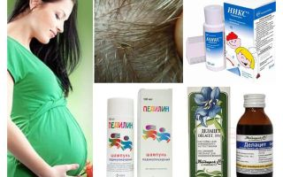 Wie Pediculosis während der Schwangerschaft und Stillzeit zu behandeln