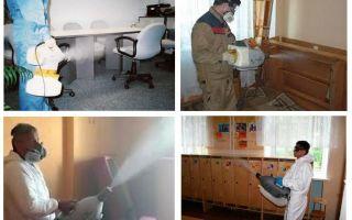 Hot-Nebel-Behandlung für Wanzen