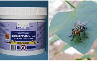 Die Verwendung von Agita aus Fliegen
