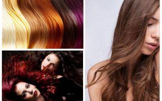 Kann es Läuse auf gefärbten Haaren geben?