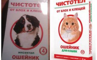 Halskrause für Katzen und Hunde