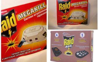 Schaben Raid: Fallen, Spray, Aerosol