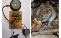Ultraschall Repeller Ratten und Mäuse mit ihren eigenen Händen