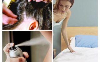 Memo auf Pediculosis für Eltern