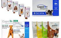 Tabletten für Flöhe und Zecken für Hunde
