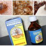 Cucaracha Heilmittel für Wanzen-1