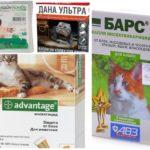 Floh-Tropfen für Katzen-1