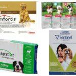 Flohtabletten für Hunde