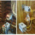 Mikrowelle gegen Borkenkäfer