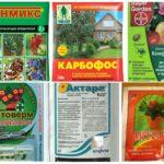 Effektive toxische Chemikalien von Blattläusen