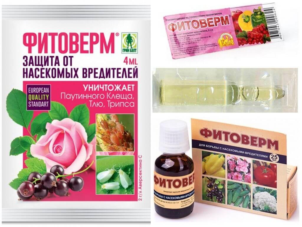 Phyto-Farm vom Kartoffelkäfer
