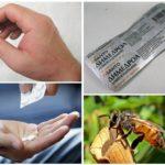 Biss-Allergie-Behandlung